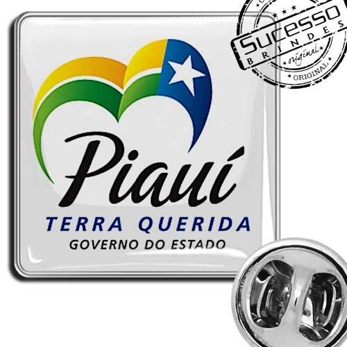 pin governo do estado do piauí instituição prefeitura governo orgão