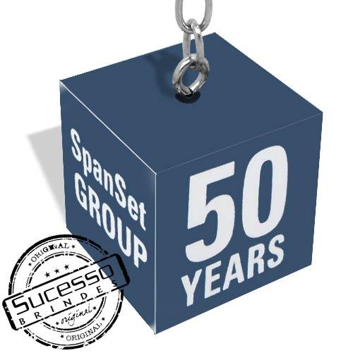 caveiro cubo, chaveiro quadrado, chaveiro dado, chaveiro 3d, chaveiro ecológico, chaveiro personalizado, chaveiro sustentável, comemorativo, 50 anos, box