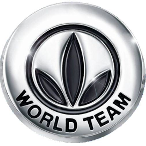 PINS HERBALIFE WORD TEAM
