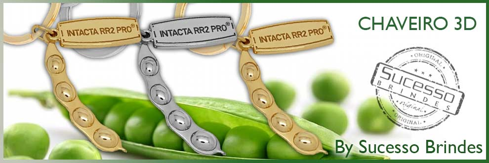 CHAVEIRO-VAGEM-3D-REMÉDIO-INTACTA-RR2-PRO-SUCESSO-BRINDES